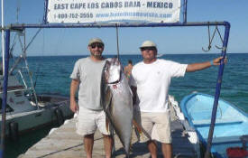 ... Cape Fishing Vacations - Fishing Resorts - East Cape Fishing Resorts