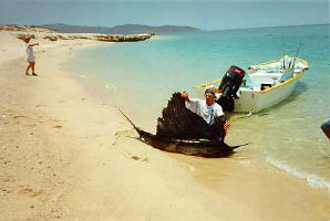 La Paz Baja Fishing
