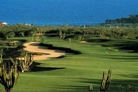 Cabo Golf Vacations