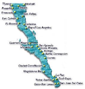 baja san quintin single personals San quintín-este año baja california podría incrementar de 8 a 12 sus áreas clasificadas para la exportación de moluscos bivalvos, .